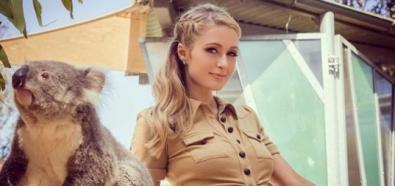 Paris Hilton wspiera swoją osobą ginące Koale