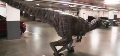 Atak dinozaura na parkingu