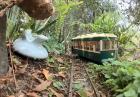 Mini pociągi w ogrodzie