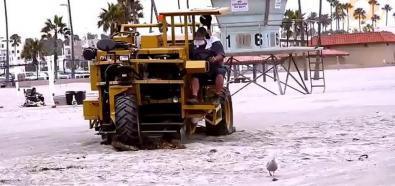 Maszyny sprzątające plażę