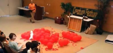 Piesek bije rekord w rozbijaniu balonów