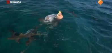 Dziennikarz vs rekin