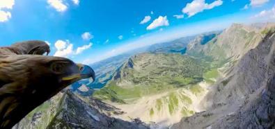 Orzeł nad Alpami