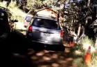 Niedźwiadek demoluje wnętrze samochodu