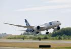 USA: Polka zakłóciła lot - samolot awaryjnie lądował