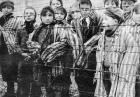 Staruszkowie skazani za negowanie Holokaustu