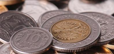 Wtorkowy poranek przynosi osłabienie złotego do dolara i stabilizację do euro
