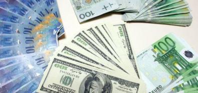 Osłabienie europejskich walut do poziomu ze stycznia 2009 roku