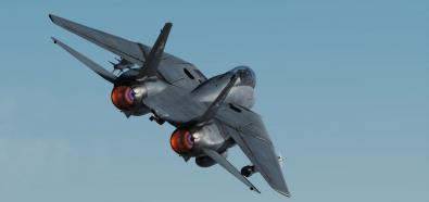 DCS World: F-14