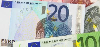 Euro coraz częściej z Internetu