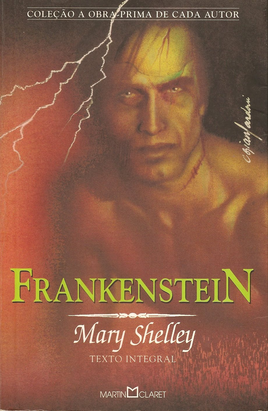 a brief analysis of the story of frankenstein a novel by mary shelley This chapter provides information on the story's background and which mary shelley knew a great frankenstein remains a relevant analysis of the dangers.