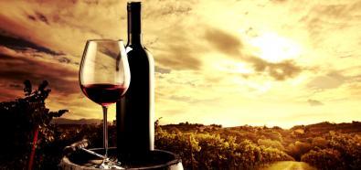 Szlakiem wina po Europie