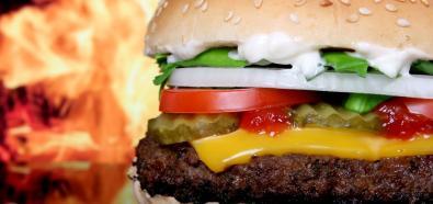 Jedzenie fast foodów