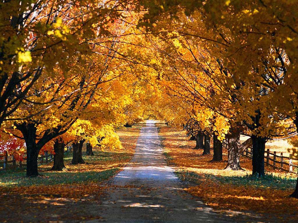 Gdzie wybrać się na urlop jesienią?