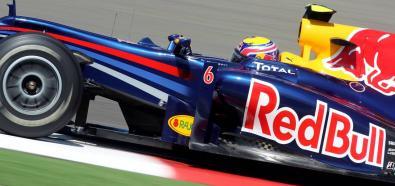 Sebastian Vettel wygrał Grand Prix Indii