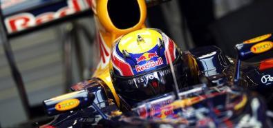 Sebastian Vettel wygrał kwalifikacje do GP Korei
