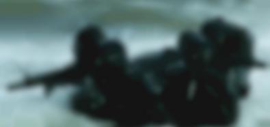 Afganistan: Polscy komandosi zatrzymali jednego z najgroźniejszych terrorystów