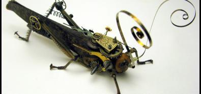Owado-roboty - czy fantastyka juz stała się rzeczywistością?