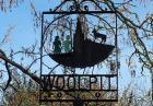 Zielone dzieci z Woolpit i ich tajemnica