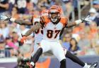 NFL: Jerome Simpson - najlepsze przyłożenie w historii?
