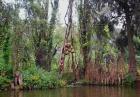 Wyspa Lalek w Meksyku