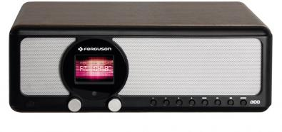 Ferguson i300
